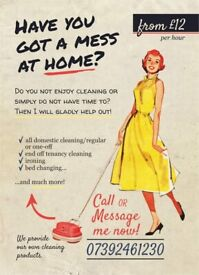Cleaning & Ironing