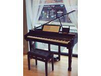 Pandemonium Studios - 30 Minute Free Music Lesson - Piano/Vocals/Guitar/Bass/Drums/Saxophone