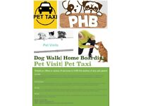 Dog Walker   Pet Sitting   Doggy Day Care   Pet Taxi   London   Suffolk