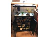 FISH TANK AND CABINET COMPLETE SET UP