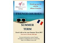 Summer Term : Adult Courses
