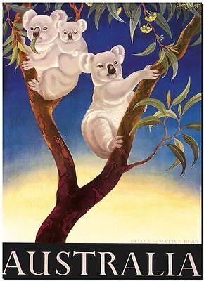 Vintage Illustrated Travel Poster Canvas Print   Australia Koala Gumtree 8 X 12