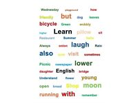 ESOL Teacher - Learn English with on line or face to face lessons. Beginners to Advanced students.
