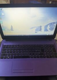 HP Purple Laptop - Like New