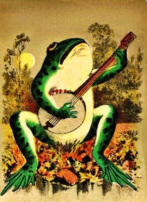 Banjo Playing Frog Vinyl Sticker Decal Hippie Rock n Roll Grateful Dead Yeti Cup ()