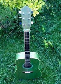 Earthfire acoustic guitar