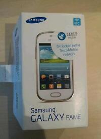 SAMSUNG FAME PHONE