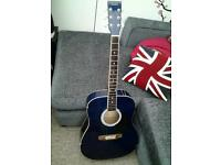 Rikter 20pgd2bl acoustic guitar needs work