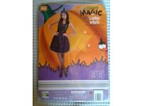 Witch Halloween Costume Size 14-16 (BNWT)