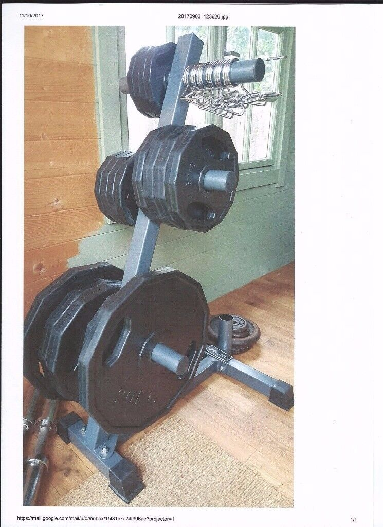 8f4db5a79ea Weight Stand and Olympic Disc Kit