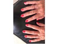 CND shellac nail manicure £15 shellac toes £15 or both for £25 .Free Parking .