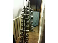 Professional Stainless Steel Dumbbells Gym Weights with Rack
