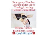 Plumber Drains Gutters Unblocked Cleared
