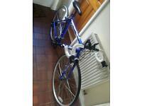 Road Bike - New