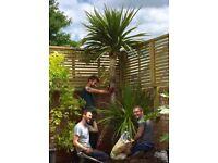 Assistant for gardening needed. Flexible hours