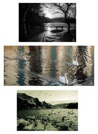Original prints by Aldous Solary, Landscape photographs, Street photographs, Nature photographs