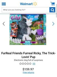 Ricky Toy