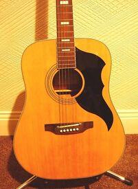 EKO RANGER VI ( 60's Vintage Reissue) Acoustic Guitar