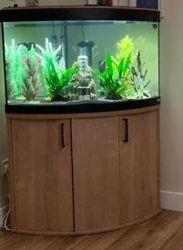 Fluval Venezia fish tank and cabinet