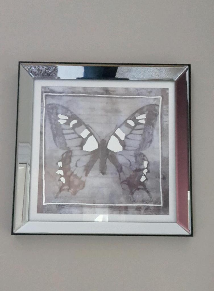 Laura Ashley Mirror Framed Butterfly Print In Kilrea