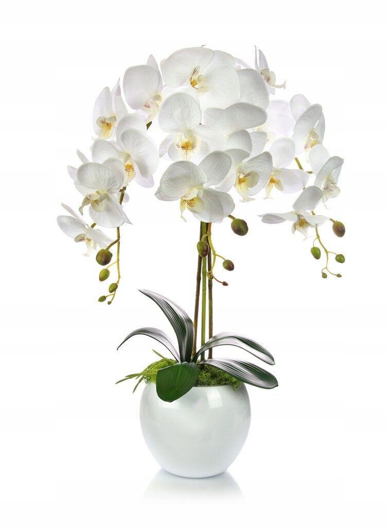 Künstliche Orchidee Kunstblumen Kunstpflanze Gesteck Weiß gesamt. H:60cm