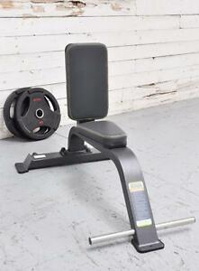 NEW eSPORT COMMERCIAL UTILITY BENCH, DUMBBELLS, PRESS, ARMS,  T1038