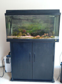 Juwel 80 Aquarium + Cabinet Black + 1000EF External Filter