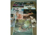 Vinyl LPs Women singers early 80s mainly