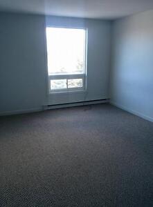 1 Bdrm apartment near Village Mall! 1ST MONTH FREE! St. John's Newfoundland image 4