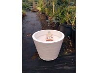 White Textured Resin Planter - 30cm high and 39cm wide - New - Frostproof - 3 Available
