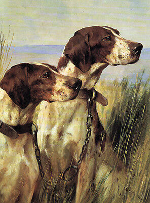 POINTER CHARMING DOG GREETINGS NOTE CARD LOVELY DOGS HEAD STUDY