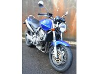 Honda Hornet 900 CB900 CB919 Cafe Racer Street Fighter Brat Bike Scrambler Bandit XJR Fazer FZ1