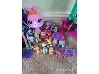 Little pet shop and monter high dolls