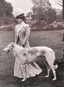 BORZOI-CHARMING-DOG-GREETINGS-NOTE-CARD-LADY-IN-EDWARDIAN-DRESS-AND-HER-DOG