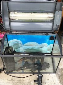 TETRA 2' FISH TANK WITH PUMPS/LIGHTS/FILTERS/GRAVEL/WOOD = WHOLE SET UP.