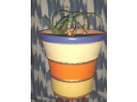 Very large Moroccan style hand painted ceramic flower garden pot + three aloe vera plants