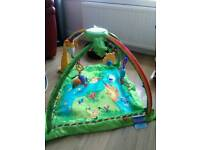 Rain Forrest play mat and vibrating bouncy chair