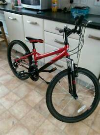 Falcon mountain bike
