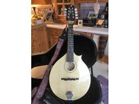Jimmy Moon Mandolin; AplusE, Serial nr 1825; immaculate condition; incl. hard case and celtic strap
