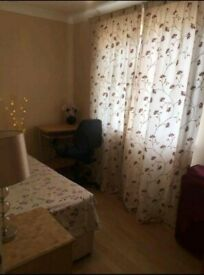 Nice / Specious Single Room at an Excellent Location
