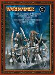 Warhammer High Elf Shadow Warriors (sealed)