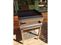 Electric flat top grill with stand
