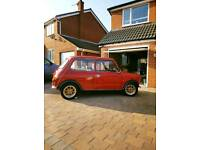 Rover mini classic cars