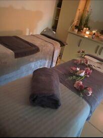 Professional Beauty/Massage Therapist