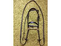 Cob Saddle, Bridle & Breast Plate with Martingale