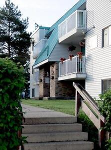 Pet Friendly 2 Bedroom Aapartment - Available Immediately!
