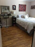 Fairfield Room For Rent