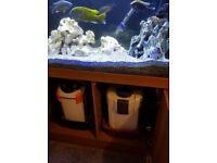 Aqua One 240Ltr Fish Tank & Stand Full Set Up