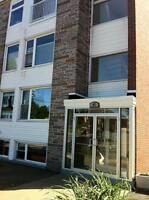 Bachelor Apartment Available on Windmill Road