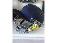 Men's woodworm cricket helmet